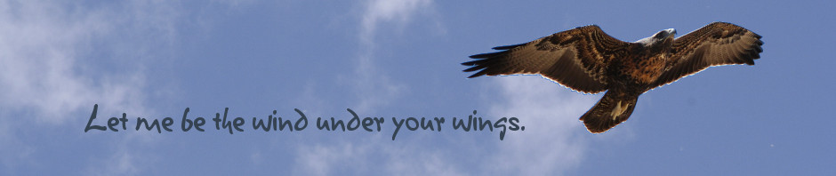 Let me be the wind under your wings.